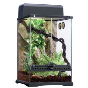 Kit Terrario Tropical Exo Terra 45x30cm